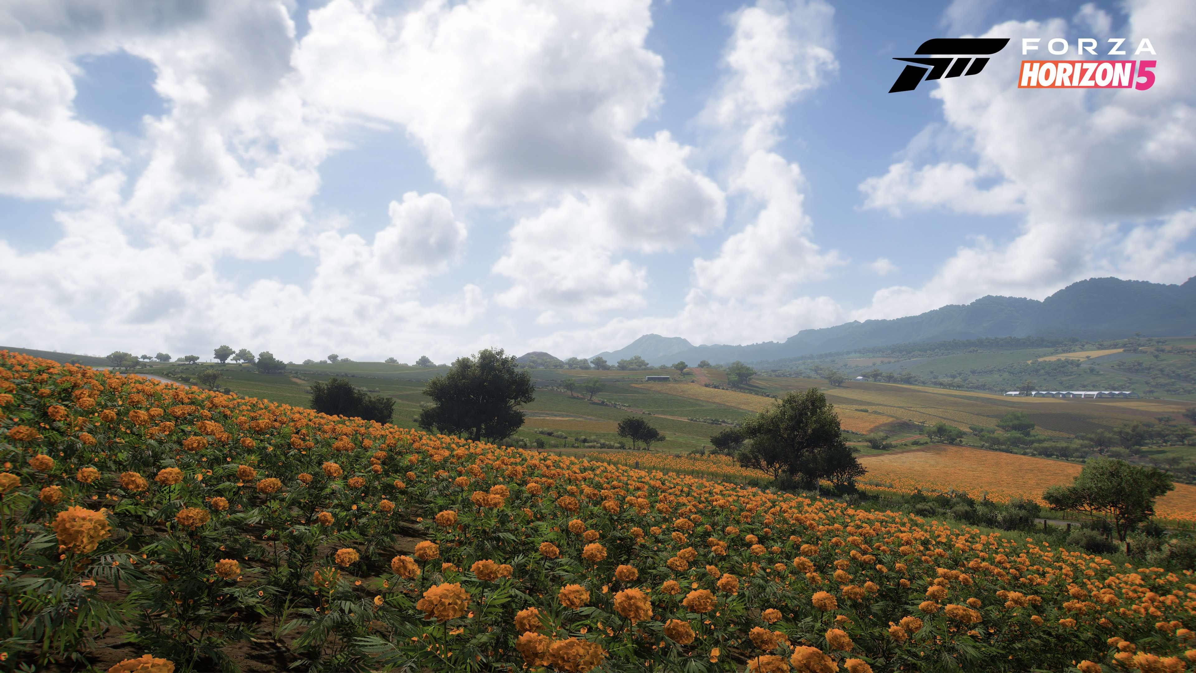 Forza Horizon 5 Farmland