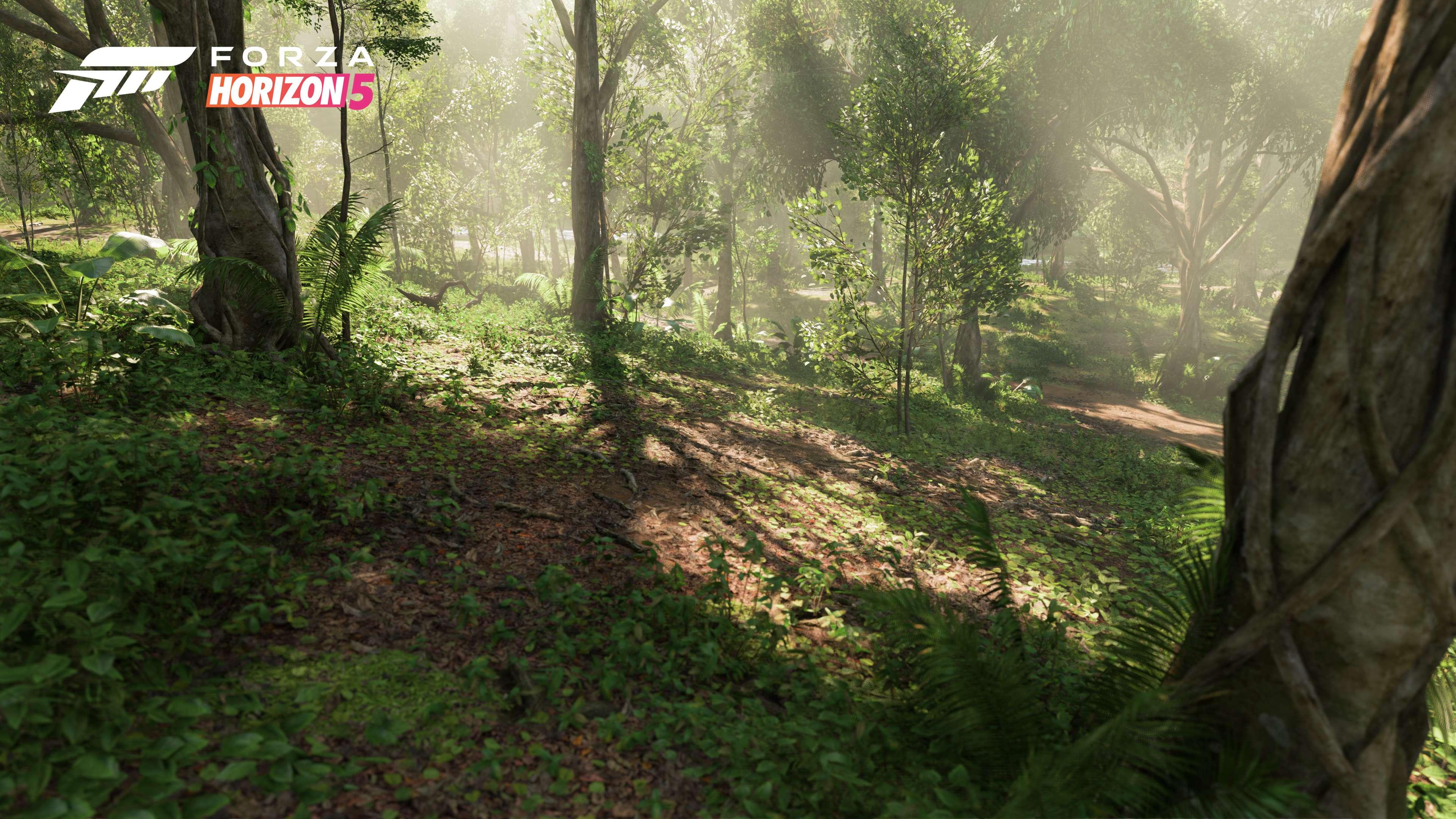 Forza Horizon 5 Jungle