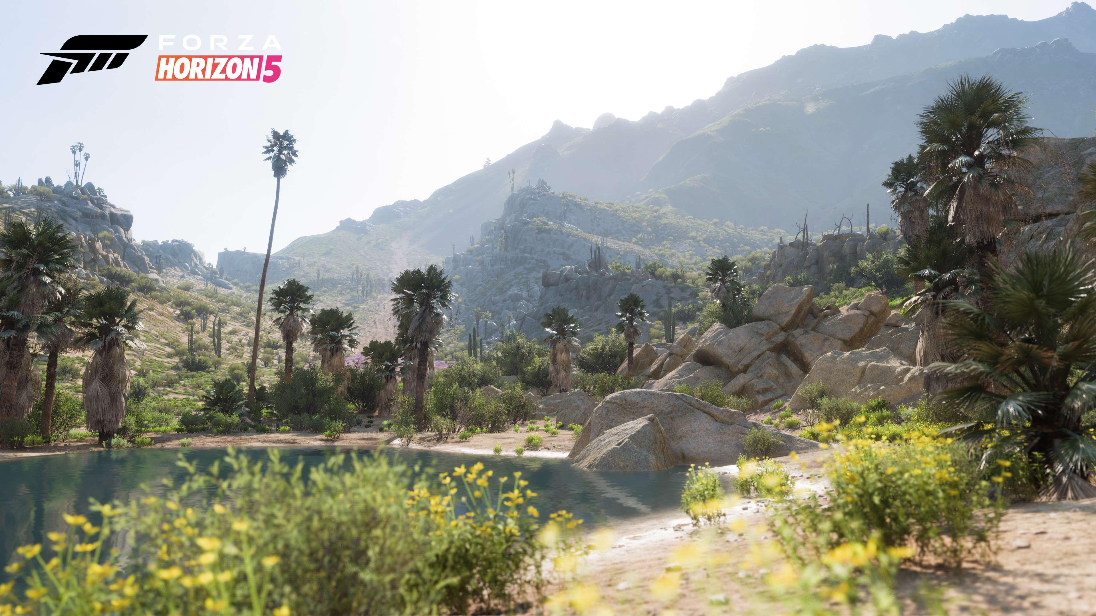 Forza Horizon 5 Living Desert
